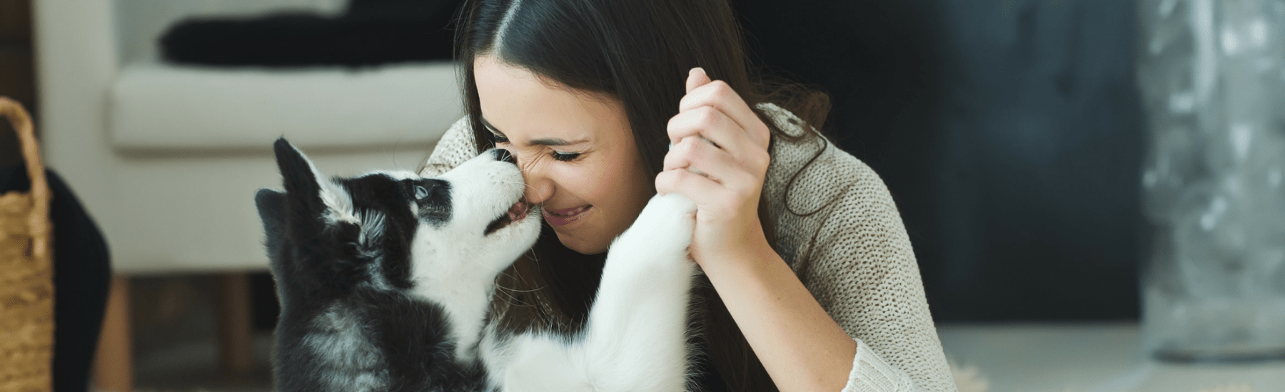 A dog licking the nose of a smiling woman